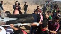 Gazze'ye Yönelik Saldırılarda Yaralananlardan Biri Şehid Oldu