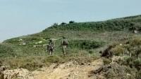 Siyonist Yerleşimcilerin Filistinli ÇiftçilereYönelik Barbarca Saldırıları Sürüyor