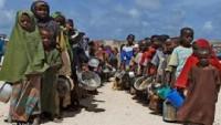Somali'de 385 binden fazla insan şiddetli düzeyde gıda sıkıntısı çekiyor