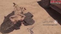 Deyrezor Kırsalında 50 Terörist Öldürüldü