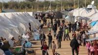 İsveç, Suriyelilere savaş bitene kadar süresiz oturum izni verdi