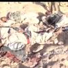 Yemen Hizbullahı, Aden-Taiz Şehirleri Arasındaki İkmal Hattını Ele Geçirdi