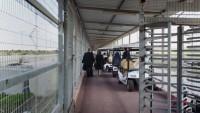 Tedavi İçin Gazze Dışına Çıkamayan Hastalardan Ölenlerin Sayısı Arttı