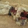 Foto: Suriye'nin Zebadani Kentinde öldürülen çok sayıda teröristten örnekler…