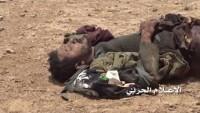 4 Üst Düzey El Kaide Lideri Yemen Hizbullahı Tarafından Öldürüldü