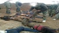 Halep'in Kuzeybatısındaki Mellah Çiftlikleri İşgalden Kurtarıldı