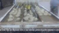 Suriye'nin Şam Kırsalında Bir Uyuşturucu Şebekesi Çökertildi