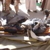 Suud Rejimi Mazlum Yemen Halkını Yakıcı Ve Kavurucu Silahlarla Vurmaya Başladı: 7 Şehid 15 Yaralı