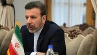 Mahmut Vaizi: Trump içine düştüğü çıkmazdan kurtulma telaşında