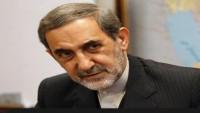 Velayeti: İran ve Brezilya'nın uluslararası arenada tutumu ortaktır