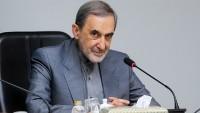 Ali Ekber Velayeti: Mişel Avn Ve Nasrallah'ın Tedbirleri, Suudi Komplosunu Çökertti
