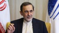 Velayeti: İran, Irak Ezedileri'ne hiçbir yardımı esirgemiyor
