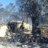 Hayfa'da Bugünde Devam Eden Yangınlardan Dolayı 35 Ev Yanarak Kül Oldu