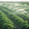 İran'da KOEP sonrası tarım alanında yabancı yatırım yüzde 300 arttı