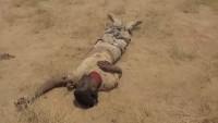 Yemen güçleri, 7 Suudi askerini etkisiz hale getirdi