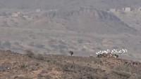 Yemen Hizbullahı İle Ordu Güçleri Leheç Şehri Kırsalında İlerliyor