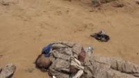 Yemen'de 23 Suudi askeri öldü