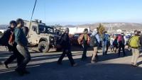Yahudi Yerleşimciler El-Halil'de Filistinlilerin Evlerine Saldırdı