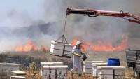 Balonlar ve Uçurtmalar Dün Yahudi Yerleşkelerinde 26 Yangına Yol Açtı