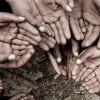BM: İklim değişikliği 122 milyon kişiyi aşırı yoksulluğa itebilir