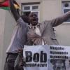 Zimbabve halkı Mugabe'nin istifasını kutluyor