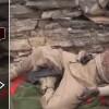 Babu Mendup Bölgesinde 15 Suud İşbirlikçisi Öldürüldü