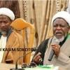 """Nijerya Müslümanların Önde Gelen Alimlerinden """"Şeyh Kasım Sokoto"""" Polis Güçlerince Şehid Edildi"""
