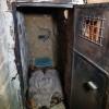 Foto: Hizbullah, Teröristlere Ait Bir Mağaradaki Hapishaneyi Dünya Basınına Gösterdi
