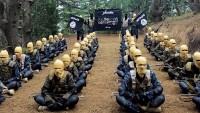 Afganistan'da 8 DEAŞ teröristi öldürüldü
