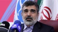 Kemalvendi: Bir çok ülke İran'dan ağır su satın almak istiyor