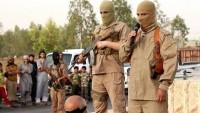 Tekfirci terör örgütlerinin hedefi Ehl-i Beyt aşıkları
