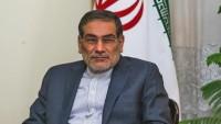 Şemhani: Tekfirci teröristlere desteklerin sürmesi, kaygı verici