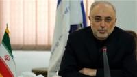 İAEK Başkanı Salihi: Bercam bozulursa, Ek protokolün uygulanması da durdurulur