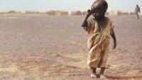 Afrika'lı Mazlumlar Ebola Virüsüne Karşı Deneme Tahtası Yapılıyor…