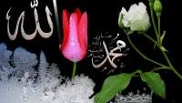 Kaside-i İslam