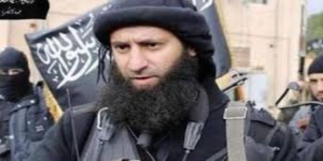 Katar terörist yuvası haline geldi …