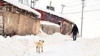 Soğuklar Doğu Anadolu Bölgesinde Etkisini İyice Hissettirmeye Başladı…