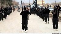 IŞİD Elebaşı Kobani'de Öldürüldü