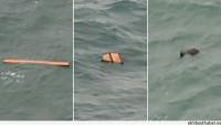 AirAsia: 6 ceset denizden çıkarıldı