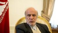 İran Dışişleri Bakanı Yardımcısı İbrahim Rahimpur: Batı İran'a Teşekkür Etmelidir…