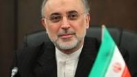 """İran Atom Enerjisi Kurumu İAEK Başkanı, İran İslam Cumhuriyeti """"Fact Sheet""""inin hazırlanmakta olduğunu bildirdi."""
