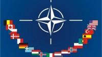 NATO Gürcistan'da eğitim merkezi kuruyor