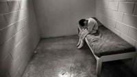 Yılda 10 bin çocuğun yolu cezaevinden geçiyor
