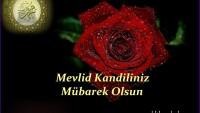 Dünya Müslümanları ve Mustazaflarının Mevlid Kandili Mübarek Olsun…