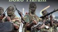 Kamerun Halkı Birlik Olup Boko Haram'ı Kınadı…