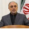 Salihi: İran milleti hakkına ulaştı