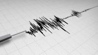 Bingöl'de 4,5'lik deprem