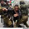 Korsan İsrail Güçleri El Halil ve Kudüs'te 18 Filistinliyi Gözaltına Aldı…