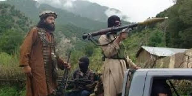 Pakistan Talibanı lideri için ödül!