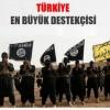Türkiye, IŞİD'in dünyaya açılan kapısıdır